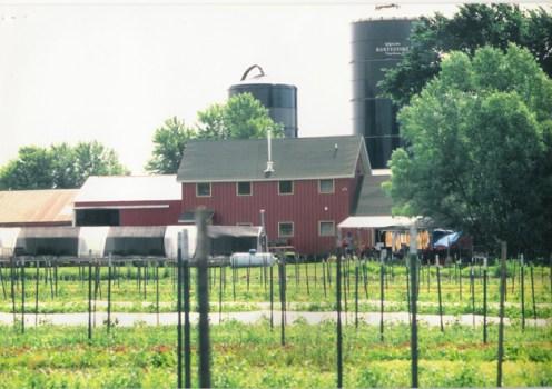 Kinnikinnick Farm