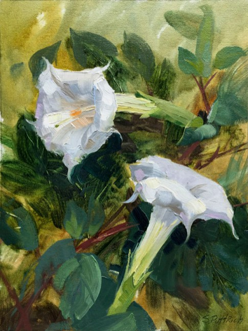 """Moonflowers"" by Steve Puttrich"