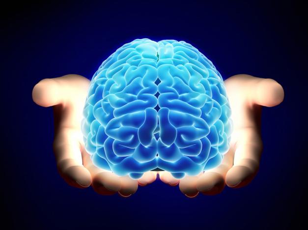 Post - Marijuana Brain Research