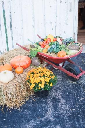 Post - Smart Farm - Farm to Table Dinner 2015-73