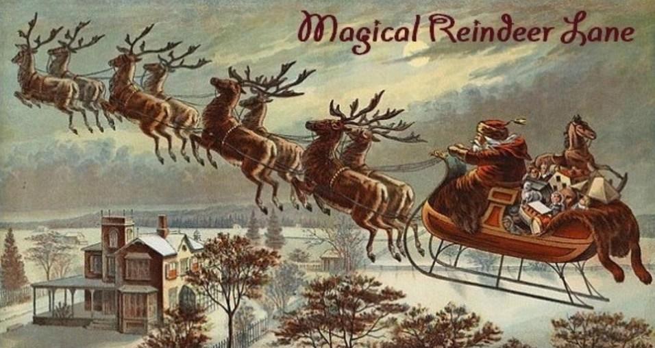 nortons-magical-reindeer-lane-village-of-barrington-holiday