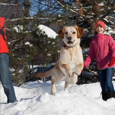 NoonDaily - Elizabeth Ashby Photography - Snow Fun