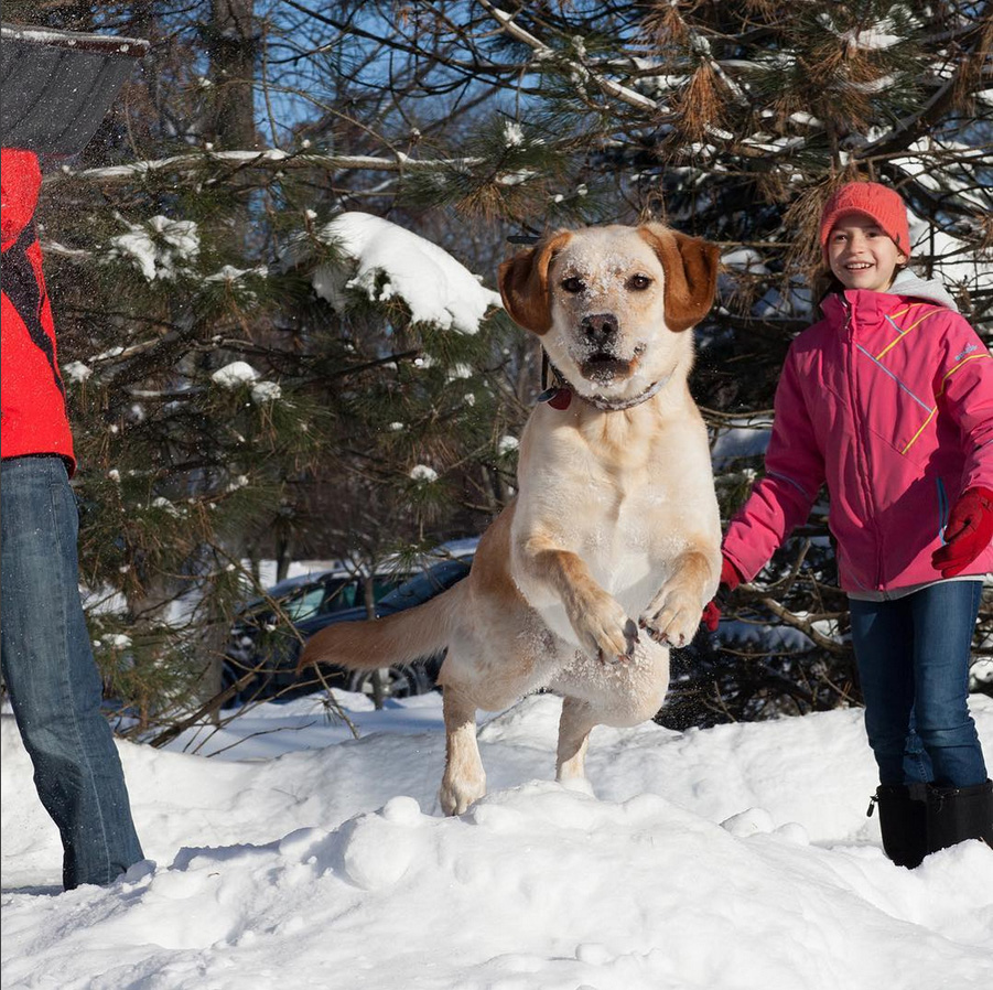 NoonDaily - Elizabeth Ashby Photography - Snow Fun