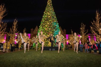 365 - Arboretum of South Barrington Holiday - Dancers