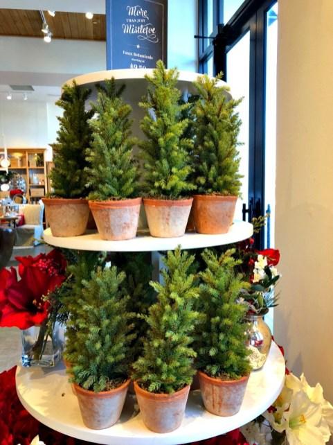 Barrington Shops - Deer Park Town Center Holiday - 3