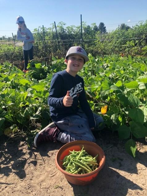 Farm Field Trip 2