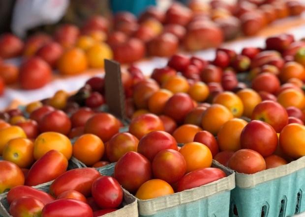 Barrington Farmers Market 2018 - 40