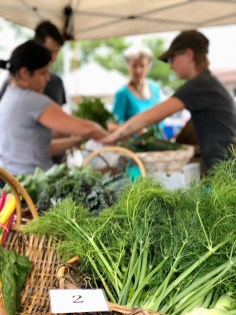 Barrington Farmers Market 2018 - 9