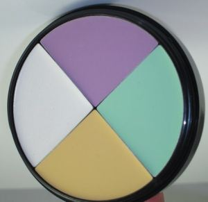 Wet N Wild Coverall Color Correcting Palette