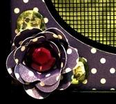 Rosette close up