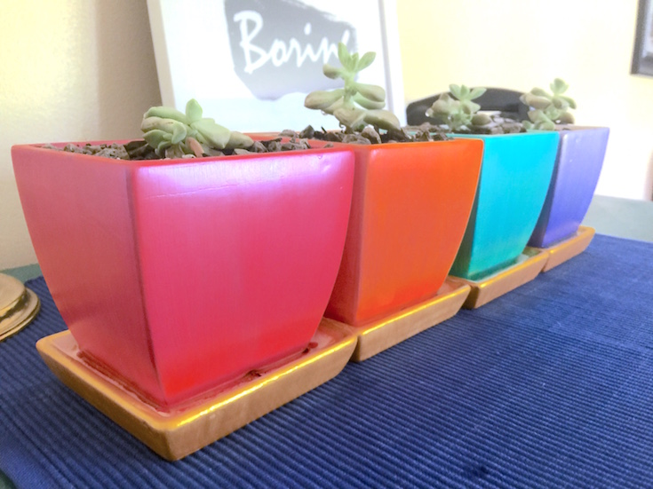 painted planters for a quick DIY gift idea