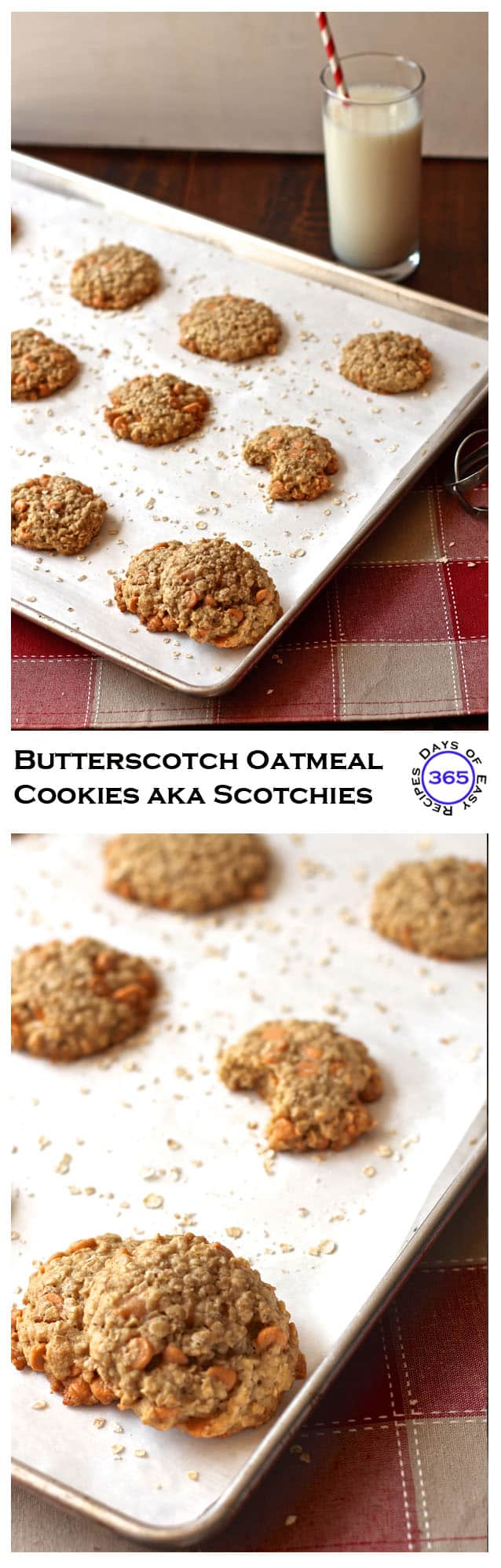 Butterscotch Oatmeal Cookies. Some people call them Scotchies. I call them delicious. | 365 Days of Easy Recipes