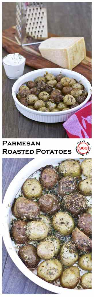 Parmesan Roasted Potatoes are simple & easy. These potatoes are bursting with flavour and wonderful any time of year. | 365 Days of Easy Recipes