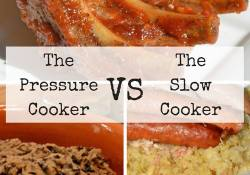 Debate: slow cooker vs pressure cooker by guest blogger Carolyn - the Wine Lover in the Wine Lover's Kitchen