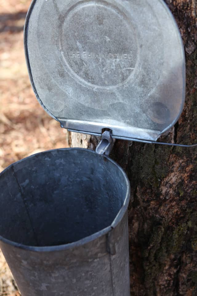 Our class trip to the sugar bush. This is how they make maple syrup.