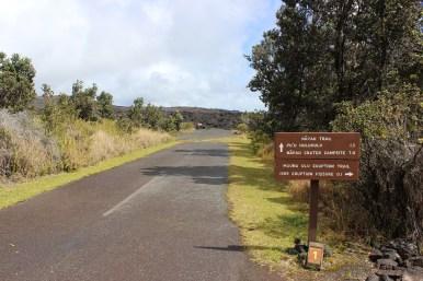 The beginning of the Pu'u Huluhulu hike.