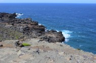 View of the blowhole from up above.