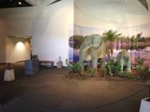 Bishop Museum 4