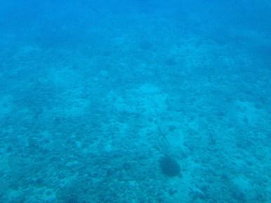 Atlantis Submarine 9