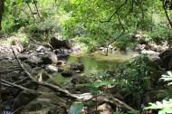 Halawa Valley 21