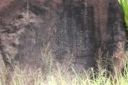 Luahiwa Petroglyphs 8