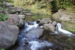 Hanakapi'ai Falls Trail 47