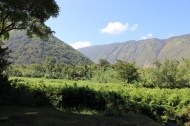 Waipio Valley 16