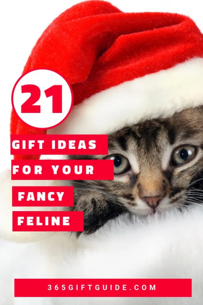 21 gift ideas for your fancy feline for christmas