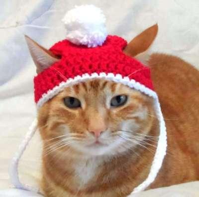 best cat gifts, Crochet Cat Hat