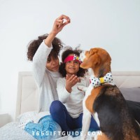 40 Gift Ideas for Dog Lovers