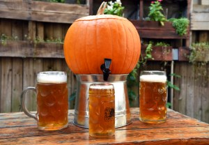 Loreley Pumpkin Palooza Bar 365 Guide New York City
