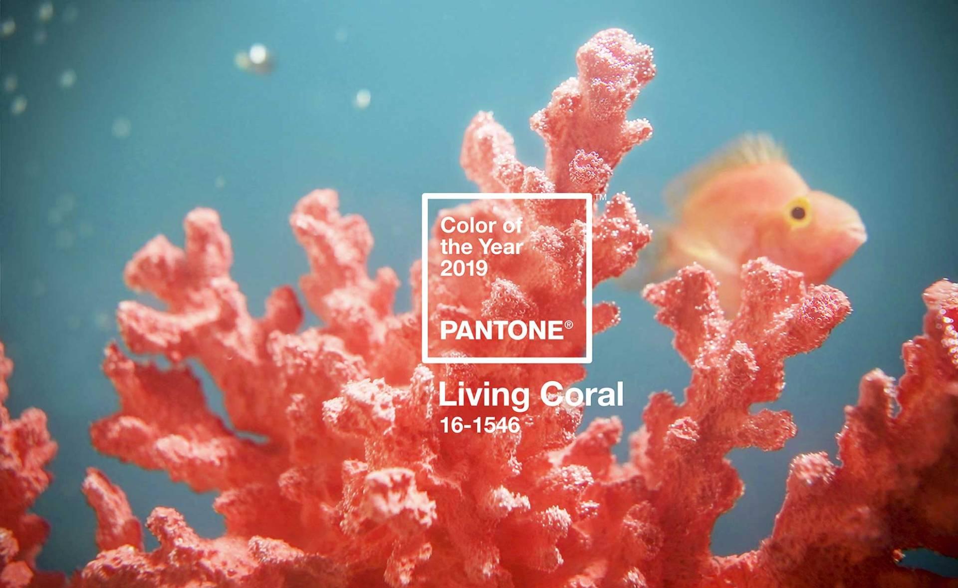 Az év színe a Pantonetól és egy kis színpszichológia - Élénk korall