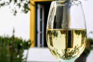 10 λευκά κρασιά που ξεχωρίσαμε το πρώτο εξάμηνο του 2019