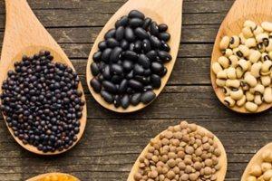 Πρωτείνη στη Vegan διατροφή