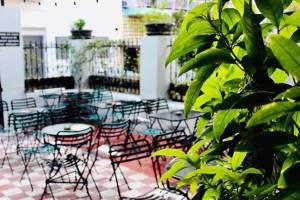 Τρεις ωραίες αυλές στα Πετράλωνα για καφέ, φαγητό και ποτό