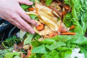 ΟΗΕ: Προειδοποιήσεις για παγκόσμια επισιτιστική κρίση