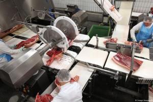 Εργασιακός μεσαίωνας σε γερμανικά σφαγεία | DW | 03.07.2020
