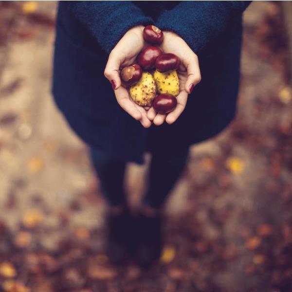 Κάστανα: Τα οφέλη τους και γιατί πρέπει να τα βάλεις στη διατροφή σου - Shape.gr