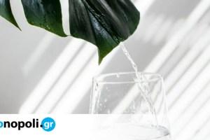 Όλα όσα πρέπει να γνωρίζετε για το νερό για να το πίνετε στην υγειά σας! - Monopoli.gr