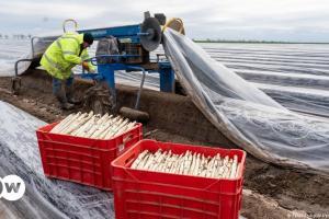 Εποχικοί εργάτες στο κυκλώνα της πανδημίας | DW | 05.05.2021