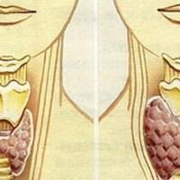 Десетки жени регулираха щитовидната си жлеза за 2 месеца с тази рецепта и казват, че живеят нов живот