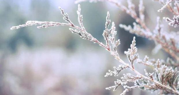 НИМХ огласи прогнозата си за февруари необикновена е!