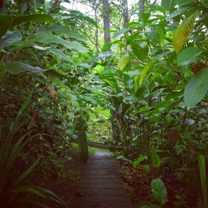 Path to our bungalow at Rancho Margot
