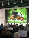 Fuji Vortrag zum Thema Hundefotografie