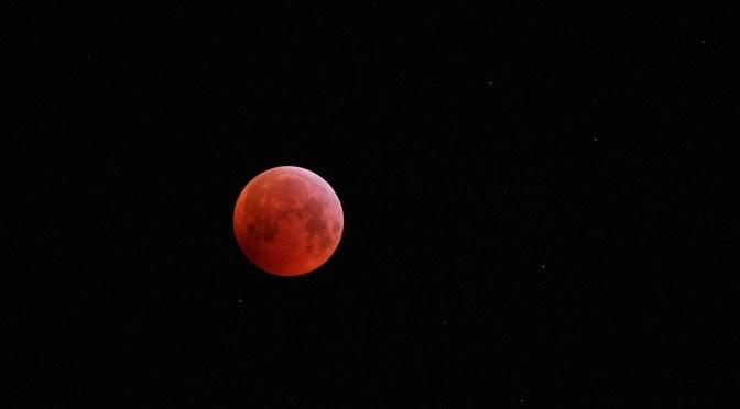 """Blutmond: Oder Die Nacht der """"langen Tüten"""""""