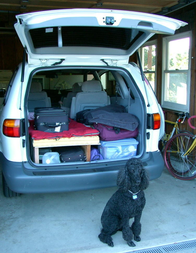 Poodle and Packed Minivan