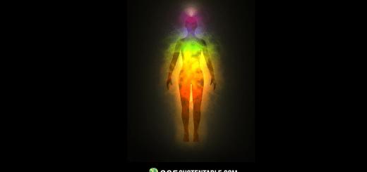 ¿Las personas absorben la energía de otras personas? ¡Demostrado por la ciencia!