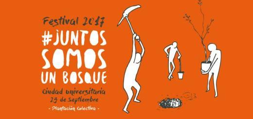 Forestacion colectiva: Festival Juntos Somos un Bosque