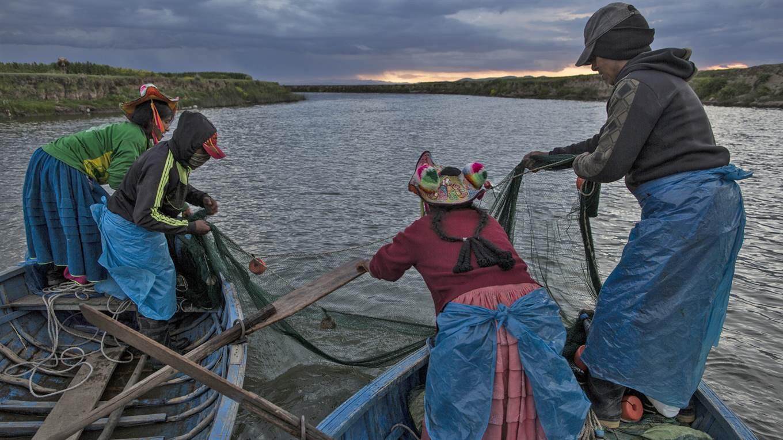 Lago Titicaca Contaminado, Pesca en el Rio Costa