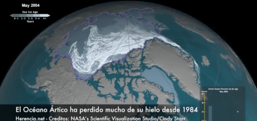 El Oceano Artico se queda si hielo